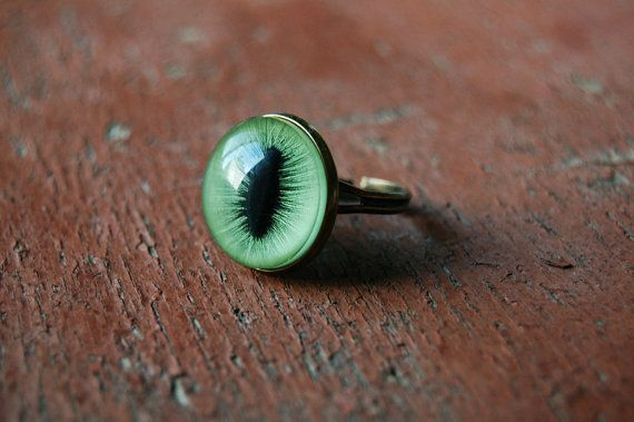 Not a fan of taxidermy but I like the idea of a cat eye ring. (I would like it if the eye was fake)