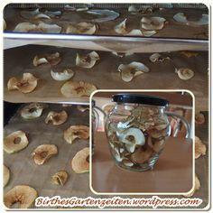 [Apfel] Der gesunde Snack: Getrocknete Apfelringe selbst gemacht statt gekauft