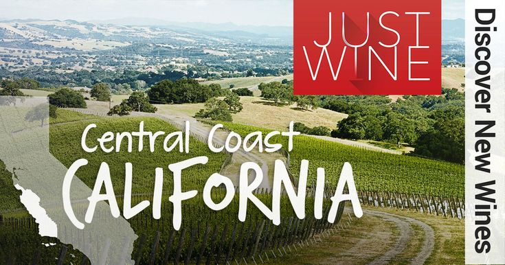 Amazing Wines From the Central Coast of California Check out these selections from a wine area that is experiencing huge growth.