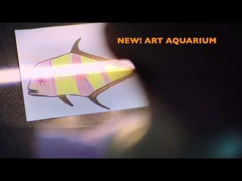 SEA LIFE Melbourne Aquarium | Cheapest Tickets | Official Site