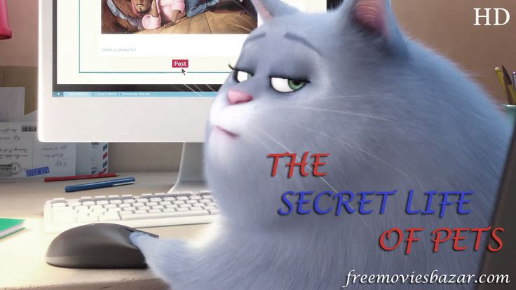 The Secret Life of Pets Full Movie Download Torrent Free Watch The Secret Life…