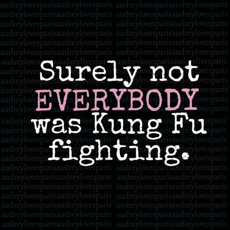 "Funny Quotes And Sayings: Surely Not ""Everybody Was Kung-fu Fighting"" Humor For"