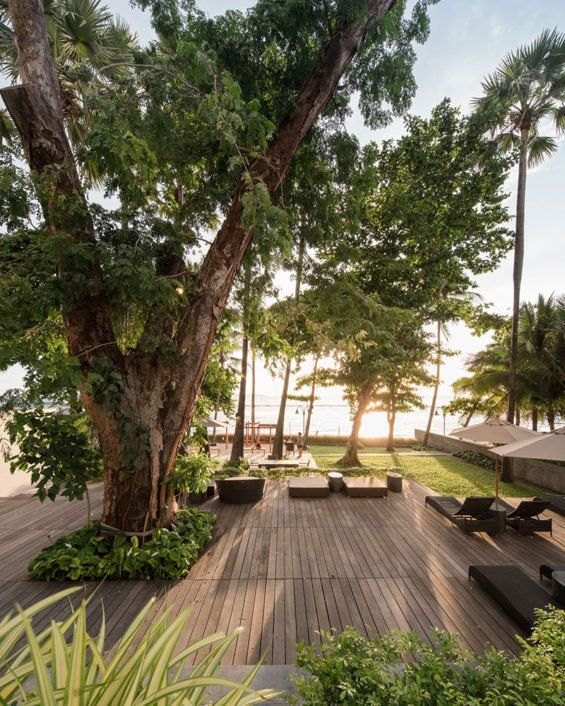 landschaftsarchitektur pattaya thailand hinterhof designs landschaften garten straenmbel landschaftsbau raum plaza design - Hinterhoflandschaften Designs