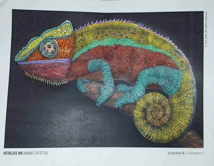 Chameleon 3 by Ana Solís