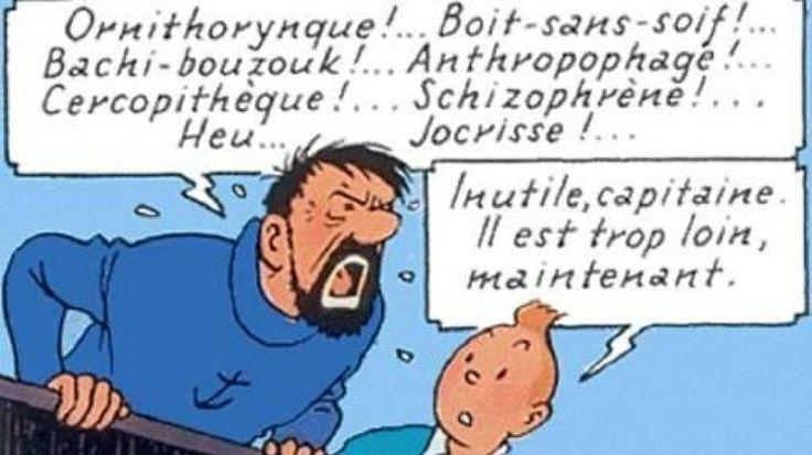 Tintin d'Hergé. Expressions veloutées du Capitaine Haddock. En lien, l'annuaire des jurons et leur explication.