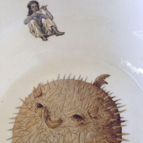 Oltre 25 fantastiche idee su illustrazione di pesce su for Pesce palla disegno