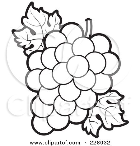 Flower Outlines for Coloring | Coloring Page Outline Of A Bunch Of Grapes And Leaves Posters, Art ...