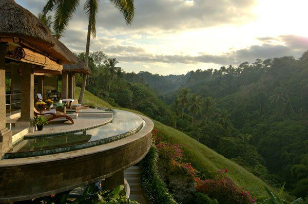 Retreat for Capricorn: Exotic rain-forest overlooking a mountain hillside.