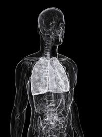 UT Southwestern Conducts Phase 2 Clinical Research For Verastem's New Lung Cancer Drug Defactinib