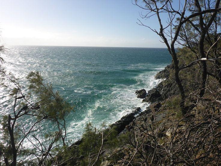 The walk through Noosa National Park