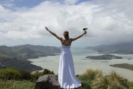 Sign of the Bellbird Wedding - New Zealand