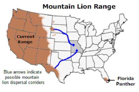 U S Mountain Lion Population Potential Route...