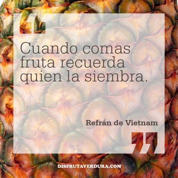 Cuando comas fruta recuerda quien la siembra. Refrán de Vietnam / BLOG Disfruta & Verdura website: www.disfrutaverdura.com blog: www.disfrutaverdura.com/blog