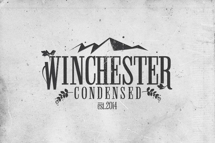 (I have this) in the Unlimited  Licence Bundle  - Winchester Condensed Font - Slab Serif - 1
