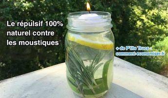 Répulsif anti-moustique à l'huile essentielle d'eucalyptus citronné