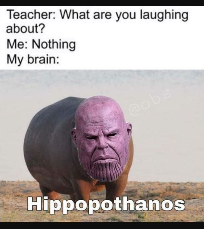 Hilarious Jokes Cant Stop Laughing Jokes Memes Funny Laugh Hilarious Lol Hausdekor Sch Funny Marvel Memes Really Funny Memes Funny Relatable Memes