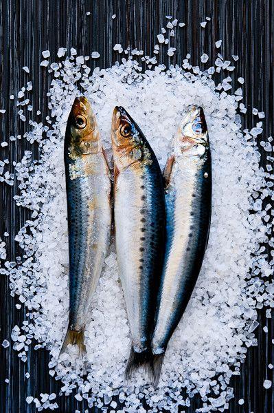Sardines    http://www.backclinicsofcanada.ca/blog/?p=417 #backpain #neckpain #nutrition