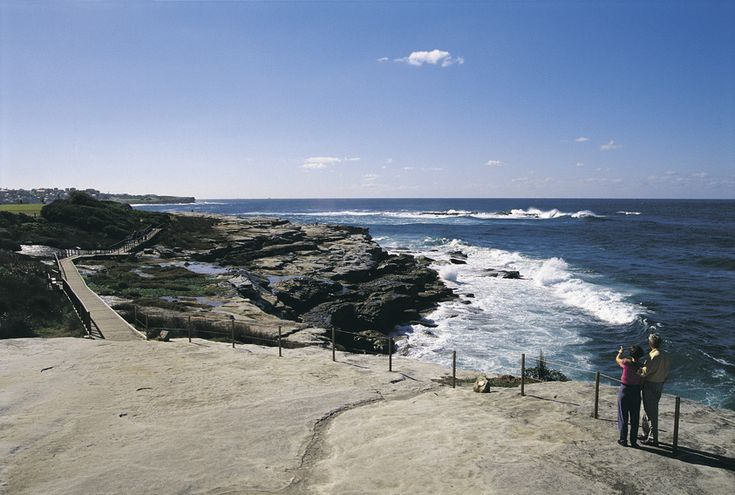 Coogee Clifftops Walk - Best Family Walks In SydneySydney Kids Food + Travel