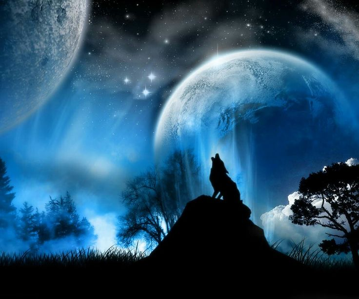 A Anime Wolf Howling At The Moon