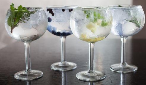 gin and tonic garnish, balloon glass
