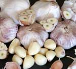 Useful information on garlic, like how much of one garlic substance to use to substitute another