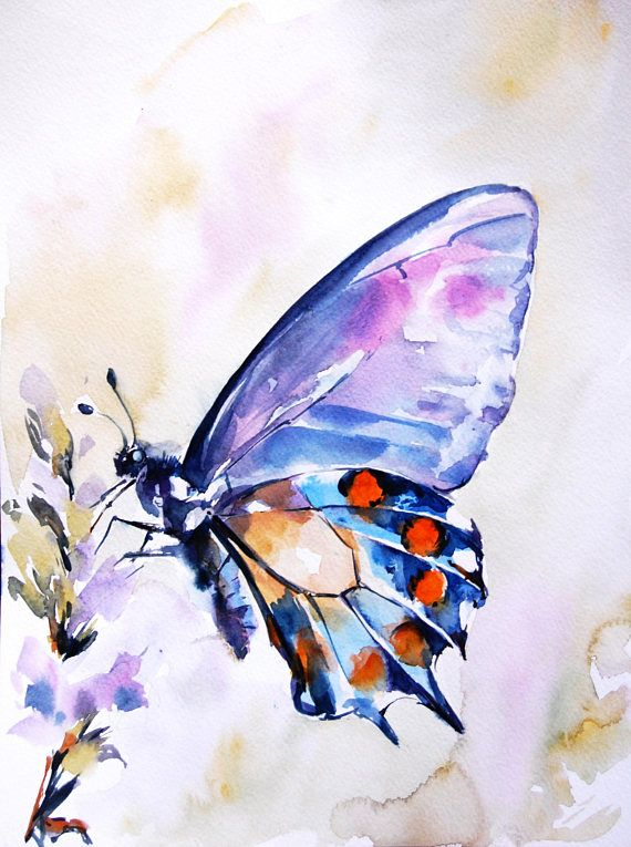 Butterfly Original Watercolor Painting Butterfly Painting