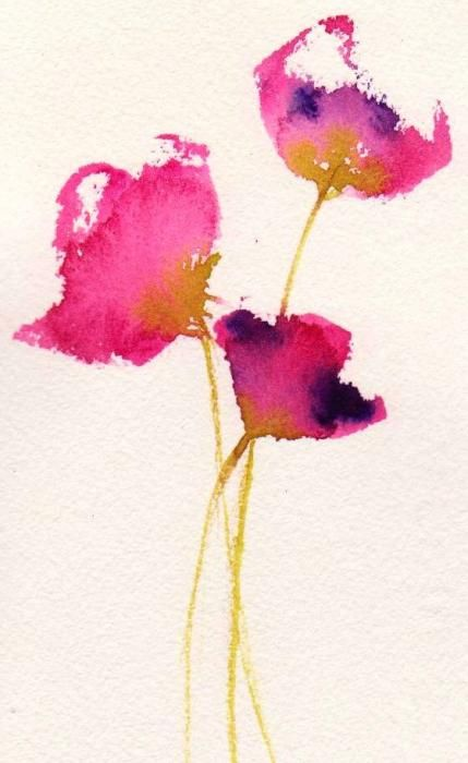 Poppy Pirouette Print by Anne Duke