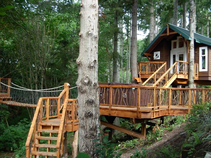 145 best Tree-Top Houses images on Pinterest | Amazing tree house ...