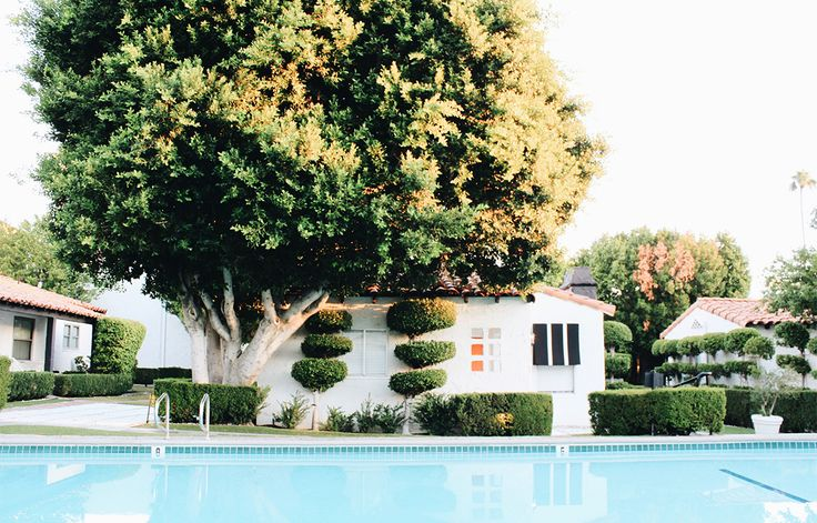 Stay At: Avalon Hotel & Bungalows, Palm Springs