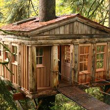 Temple of the Blue Moon at TreeHouse Point- tree houses you can stay in!!! Honeymoon!?