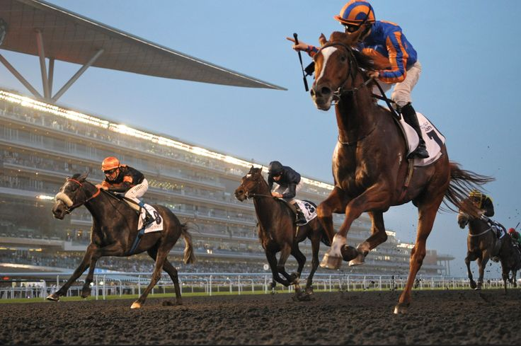 Race Season commenced on November 6, 2014 with four more races to go before the Dubai World Cup Carnival from January 8 - March 28 2015, this sporting spectacle culminates in the electrifying 20th running of the Dubai World Cup on March 28, 2015 - where the best compete on the world's richest raceday.