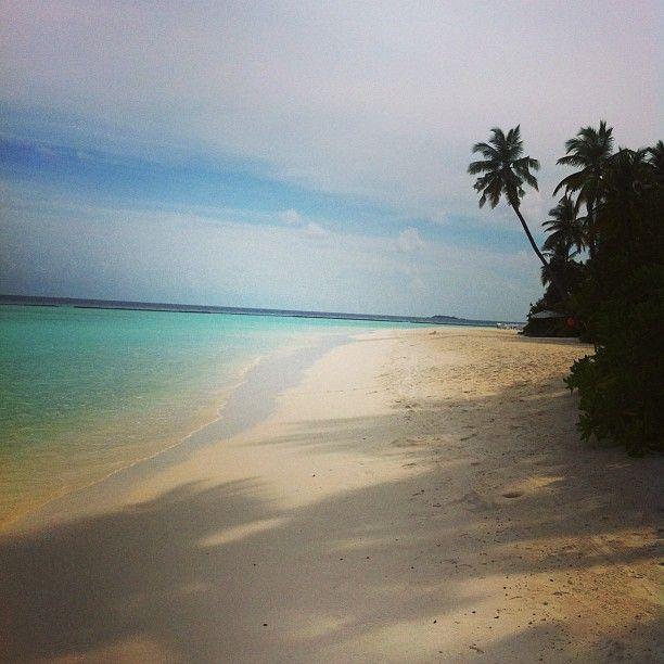 Skulle du vilja strosa längs denna strand och kanske ta ett dopp eller två? Nu är vi på nästa ö #constance #halaveli #jordenruntmedving #ving #vingresor Läs mer om Maldiverna på http://www.ving.se/maldiverna/maldiverna