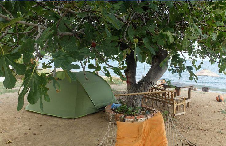Gargara Camping Assos, Çanakkale