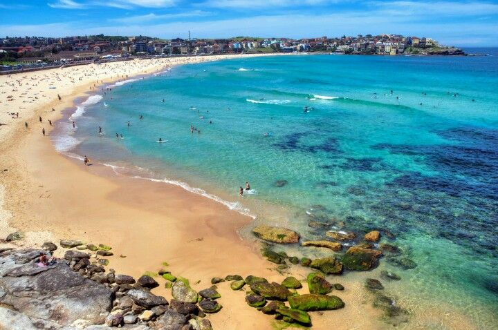 Just to relax, learn to surf, to kayak or to paddle Go straight to one of Sydney's amazing beaches : Palm Beach, Freshwater, Manly, Bronte, Coogee, Shelly Beach etc..