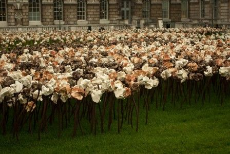Fernando Casasempere's hundreds of ceramic flowers at London's Somerset House: Fernando Casasempere S, Casasempere S Hundreds, Ceramic Flowers, London S Somerset, Somerset House