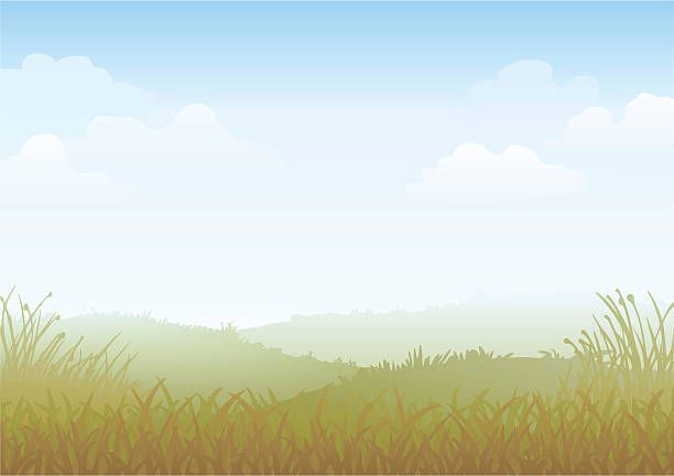 105 652 Grass Background Illustrations Royalty Free Vector Graphics Clip Art Istock Free Vector Graphics Vector Free Illustration