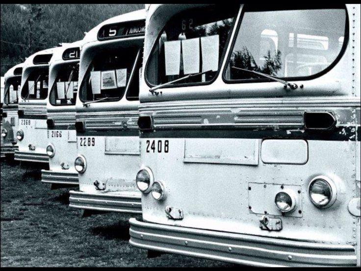 Bus graveyard in Alberta