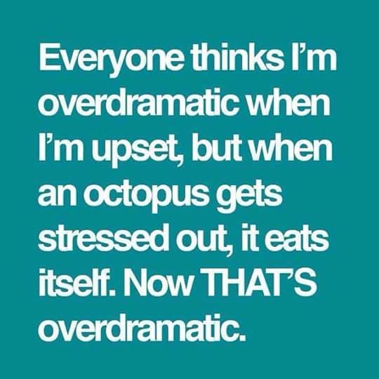 everyone thinks I'm overdramatic when I'm upset,but when an octopus gets stressed out,it eats itself,now that's overdramatic, meme