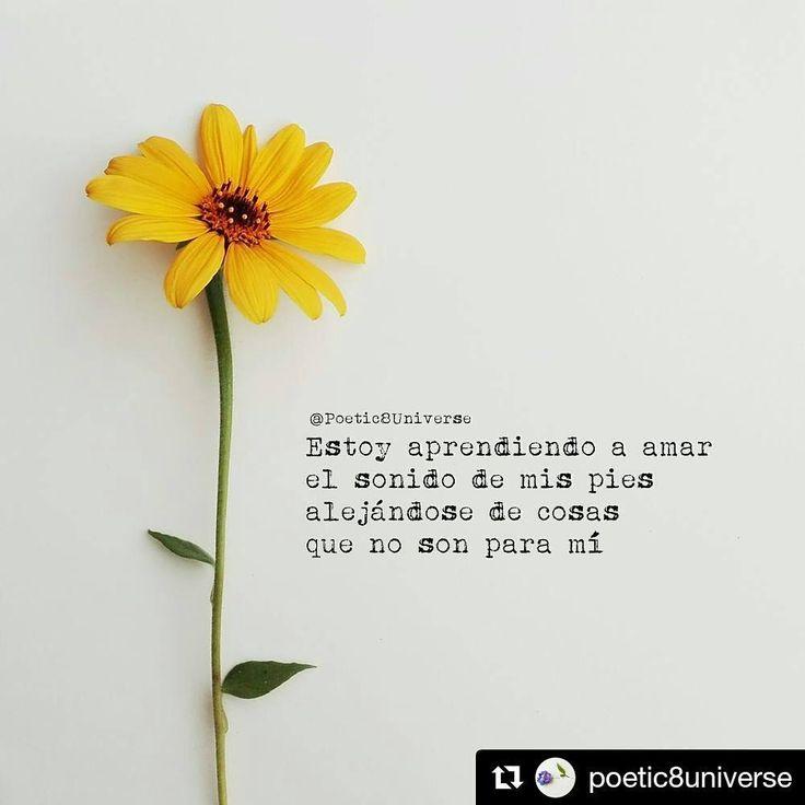 """226 Me gusta, 1 comentarios - Dímelo con Letras- Ec ❤ (@dimelocon_letras) en Instagram: """"Hermosura de @poetic8universe #Repost @poetic8universe (@get_repost) ・・・ ¡Bonito día! :)…"""""""