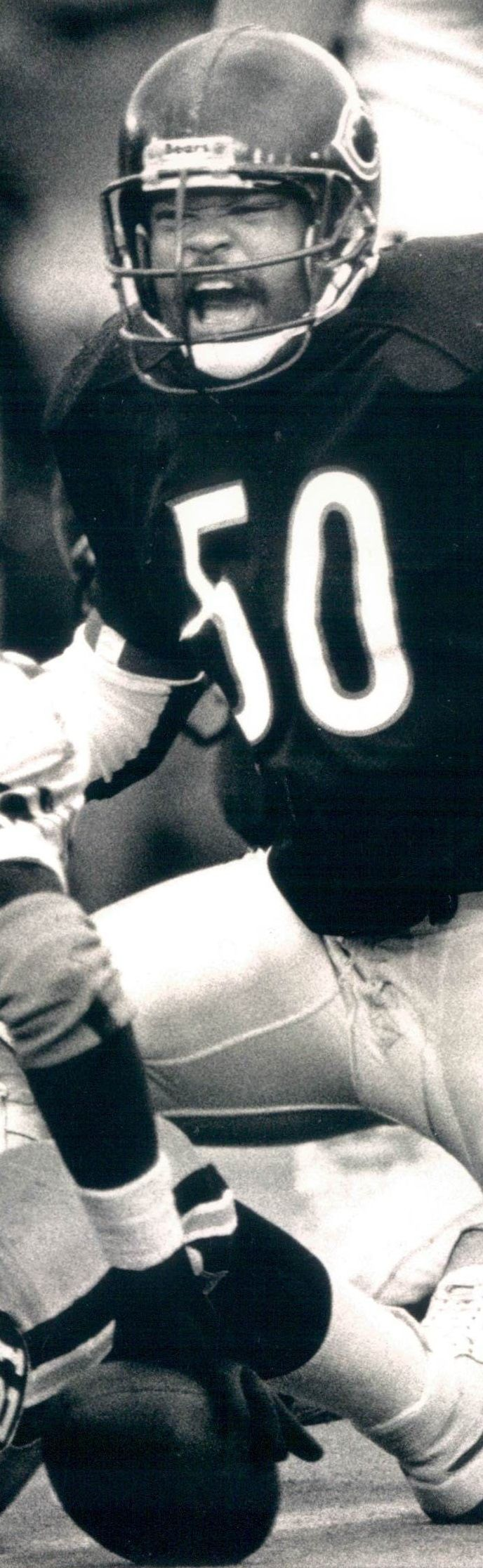 Mike Singletary #bears #85bears #chicago  #midway #football #NFL
