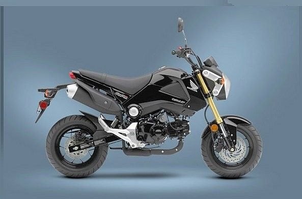 Honda Grom (Photo: Honda Powersports)