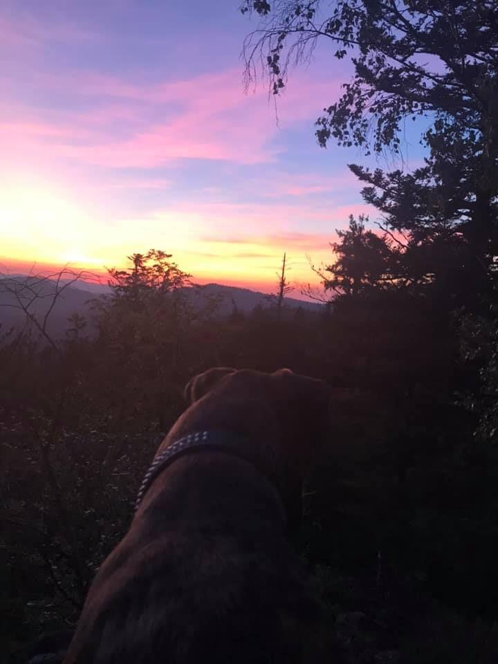 Sonnenuntergang Im Bayerischen Wald Danke An Sabine Fur Das