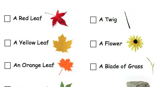 Last year with our mom group we went on an Autumn Walk. I made a scavenger hunt with pictures for the kids to make it a little more fun fo...