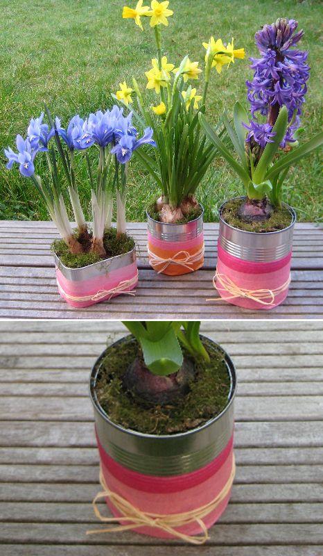 Pour fêter l'arrivée du printemps, on transforme des boîtes de conserve en jolis pots pour les premières fleurs de l'année.