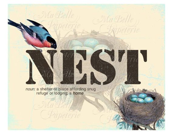 61 best Birds Nest images on Pinterest | Bird nests, Custom logos ...