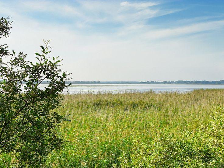 Bogactwo polskiej przyrody potrafi zachwycić. Mało jest innych krajów, które posiadają tak różnorodny krajobraz i równie szeroką paletę ekosystemów.