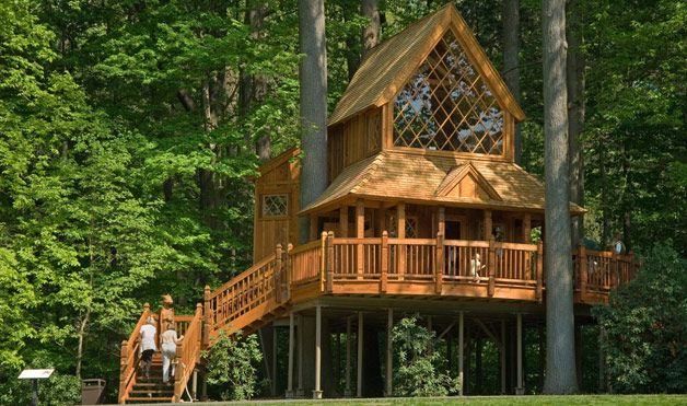 Gravity-Defying Treehouses