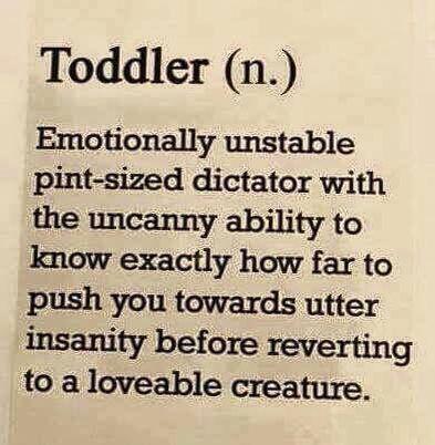 Toddler - parenting humor {pacifickid.net/} #daycarehumor #parentingboyshumor