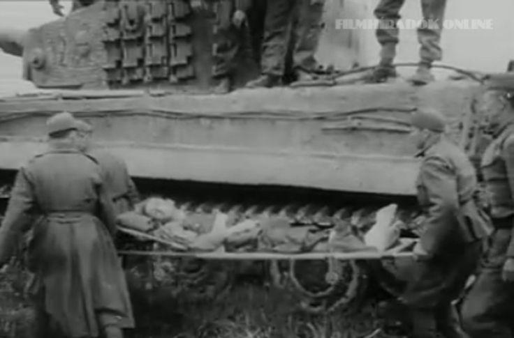 Tiger 1-Hungary