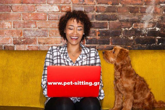 Pet Sitting: Η σημασία του ποσοστού απόκρισης και ανταπόκρισης ...